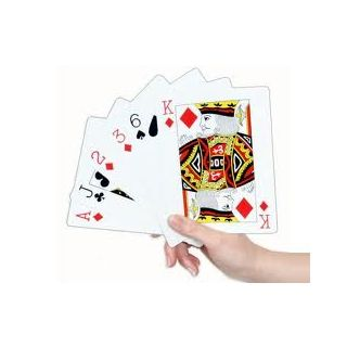 Plastic Playing Cards (Pack of 2) Just for Rs.99 at Shopclues