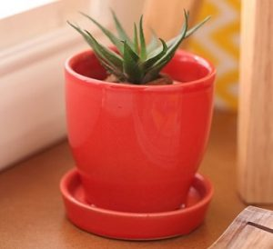 Red Cermaic Glazed Table Top Planter by Gaia for Rs.129 – Pepperfry (Limited Period Deal)